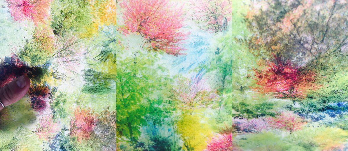 recherches-colorees-jardin-interieur-emiliejoet